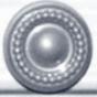 сосна серебряная +819 грн